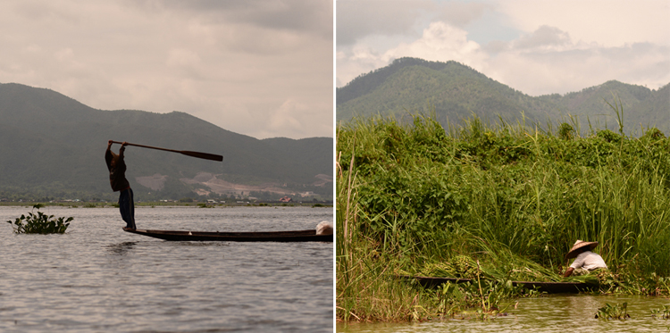 voyage, photo, birmanie, asie, lac inle, pêcheur, tomate, portrait