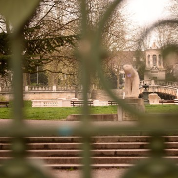 Petit aperçu de Dijon